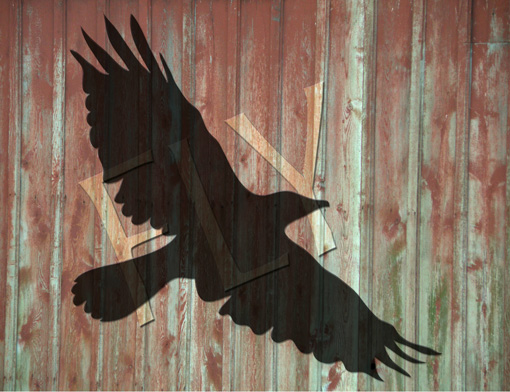 Crow shadow