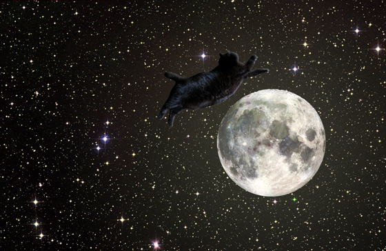 Porky jumps over the full moon